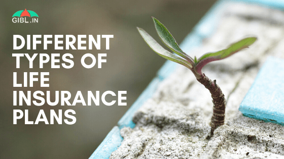 What Are the Different Types of Life Insurance Plans in 2020?
